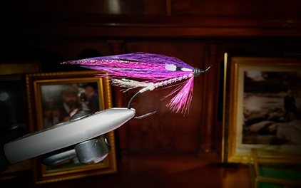 Salmon Fly Purple & Silver by Peter Scheffler at the Virtual Irish Fly Fair 2020